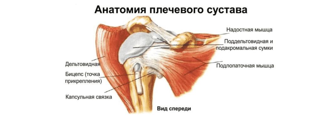 Лечение боли в плече в Кременчуге